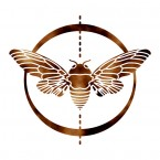 Cicada_Logo_Icon